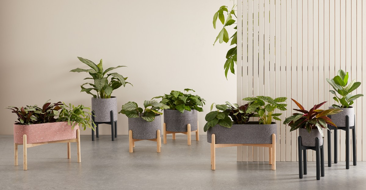 Hakuun Wide Set Of Two Terrazzo Plant Pot with Rubberwood Legs, Grey & Natural | MADE.COM (UK)