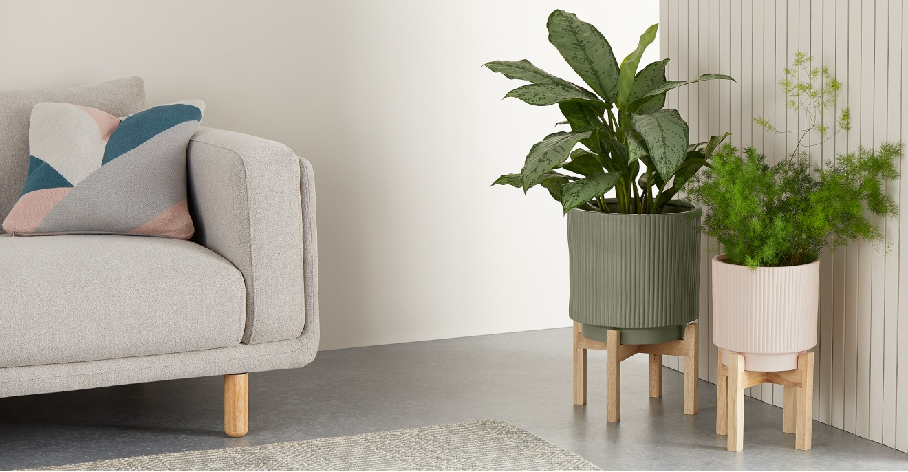 Palm Set Of Two Large Earthenware Plant Stands, Sage & Pink | MADE.COM (UK)
